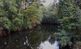 Edisto River, SC   © Hugo Krispyn